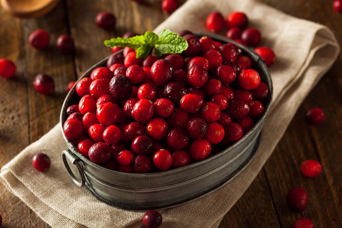 Cook-with-USCranberries-Mumbai